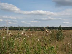 Планируется упорядочение включения земельных участков в границы населенных пунктов
