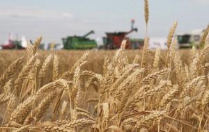 Интересы сельхозпроизводителей будут защищены антимонопольщиками