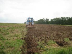 Ответственность за нарушение аграрного законодательства