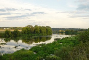 Ответственность за нарушение природоохранного законодательства