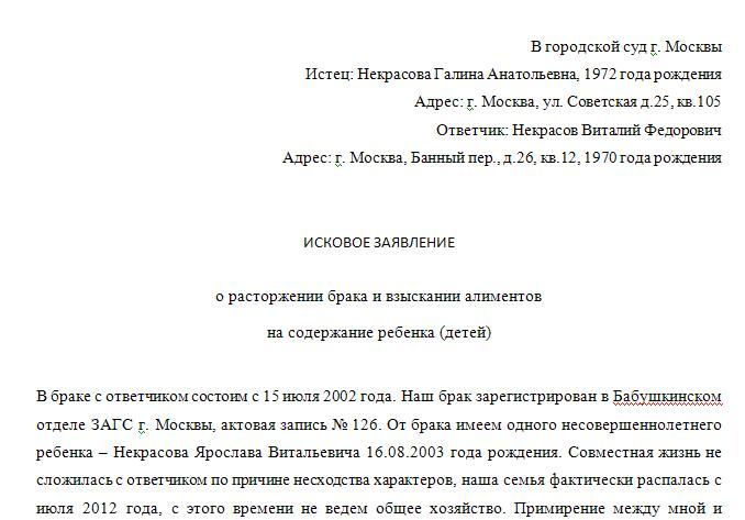 Образец заявления на развод через суд