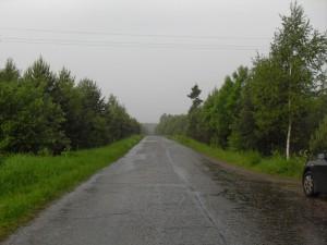 Планируется расширить возможности использования лесных участков